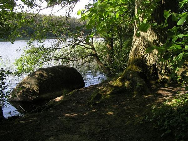 Jezioro Czajcze. Najpiękniejsze jezioro na wyspie Wolin
