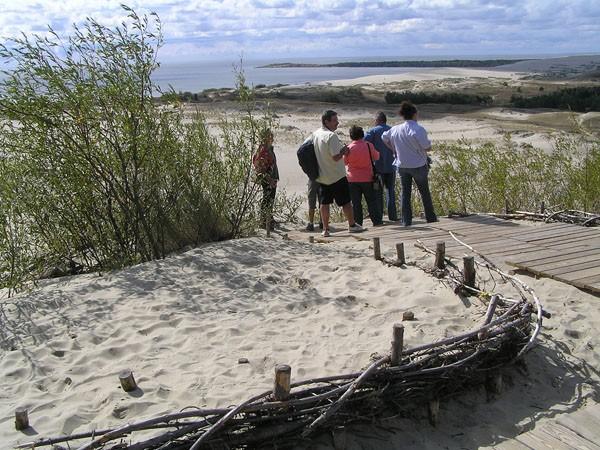 Mierzeja Kurońska. Kopy lotnych piasków w sosnowym lesie
