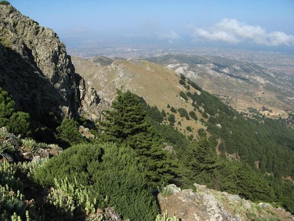 Kos. Skalną ścieżką na szczyt Dikeos