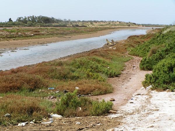 Souss-Massa. W rezerwacie, pod dyskretną opieką