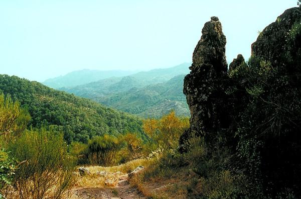 Peneda-Gerês Bliżej dzikiej iberyjskiej przyrody