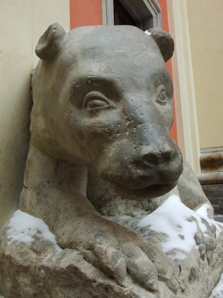 Warszawa. Obudź starego niedźwiedzia