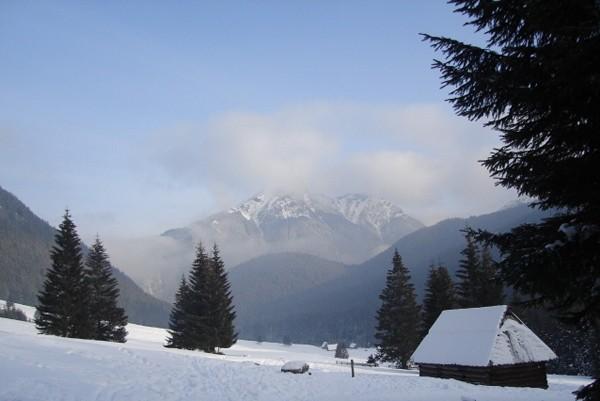 Dolina Chochołowska. Walna dolina… najdłuższa w Tatrach