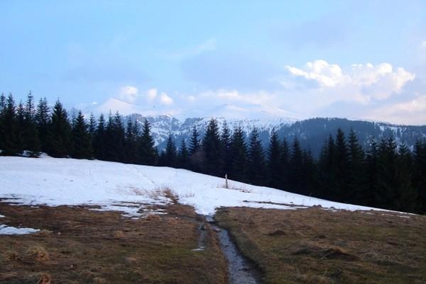 Dolina Małej Łąki Do najpiękniejszej tatrzańskiej polany