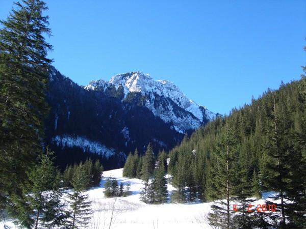 Dolina Kościeliska. Najsłynniejsza dolina w Tatrach