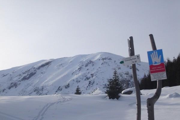 Hala Kondratowa. Zimową Ścieżką nad Reglami