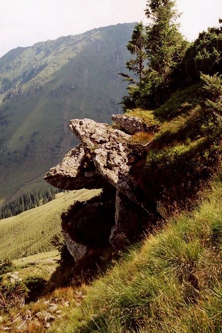 Stoh. Stare słupki na granicznej górze