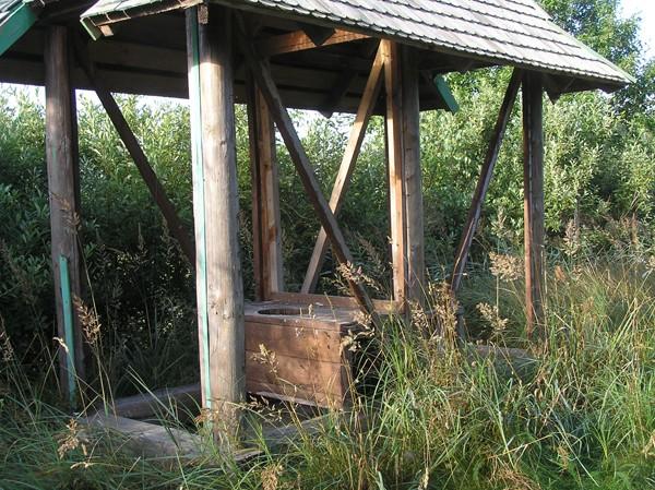 Dzukijski Park Narodowy. Las bez końca, jezioro zbnakrutowało