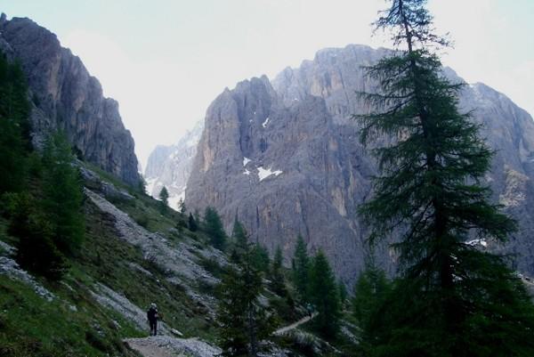 Sassolungo. Wokół skalnego gniazda