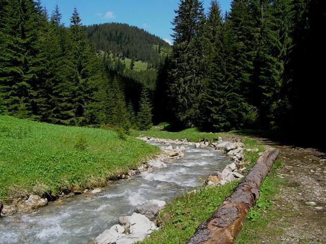Dolina Lejowa. Pusto, jak nie w Tatrach