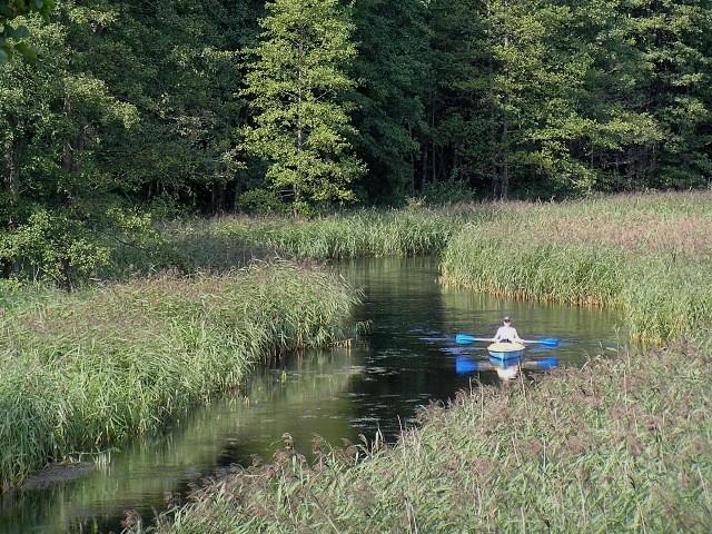 Nida Z nurtem rzeki: na Ponidziu wiosna trwa…