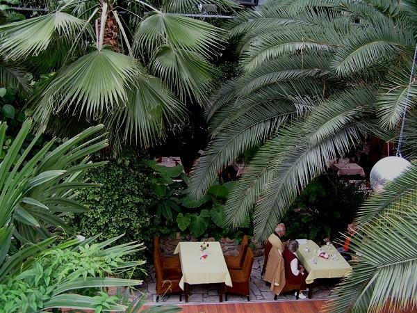 Zielona Góra Palmiarnia w Winnym Parku