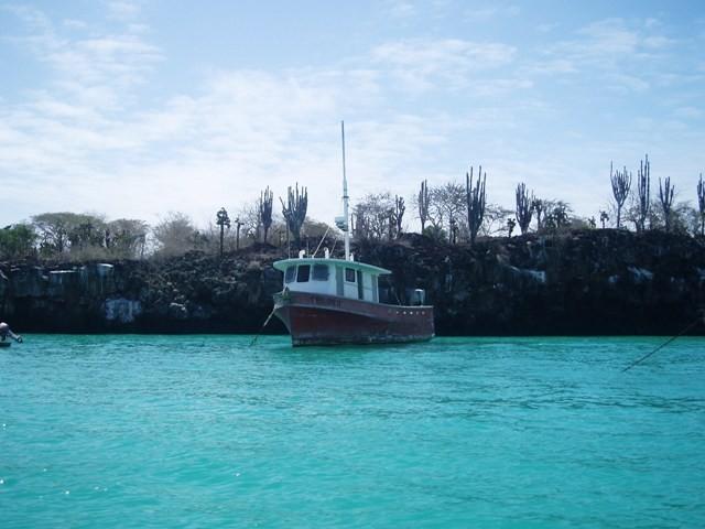 Galapagos. Żółwie na wyspie Santa Cruz