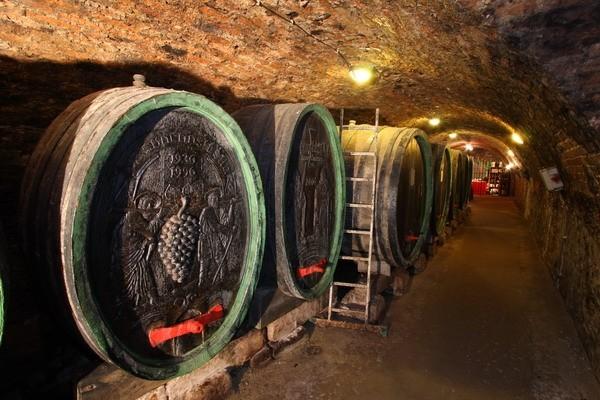 Morawy. Święto dobrego wina