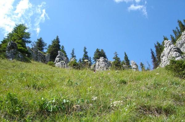Dolina Demianowska. Przez Puste i dolinę Vyvieranie