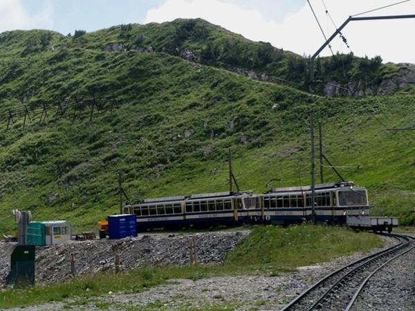 Rochers de Naye. W alpejskim raju świstaków