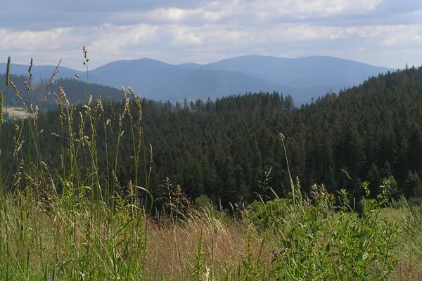 Wielka Racza. Z widokiem na morze gór