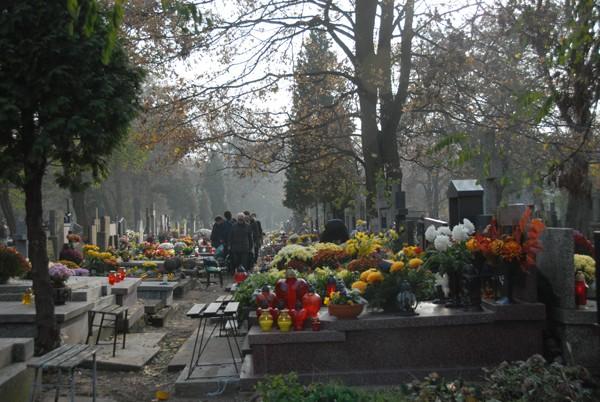 Warszawa Największa nekropolia w stolicy
