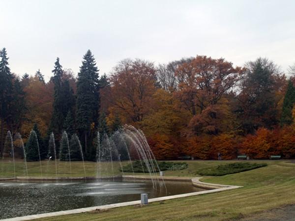 Szczecin. Nekropolia na kształt ogrodu