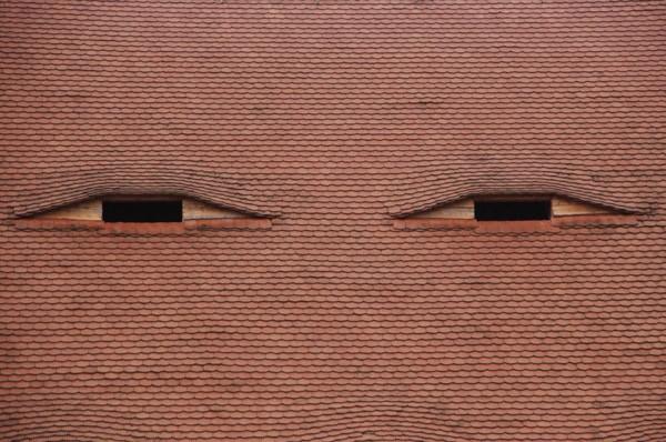 Sibiu Patrzą na mnie ogromne oczy…