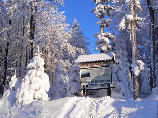 Kasina Wielka. Narciarski stok na Śnieżnicy