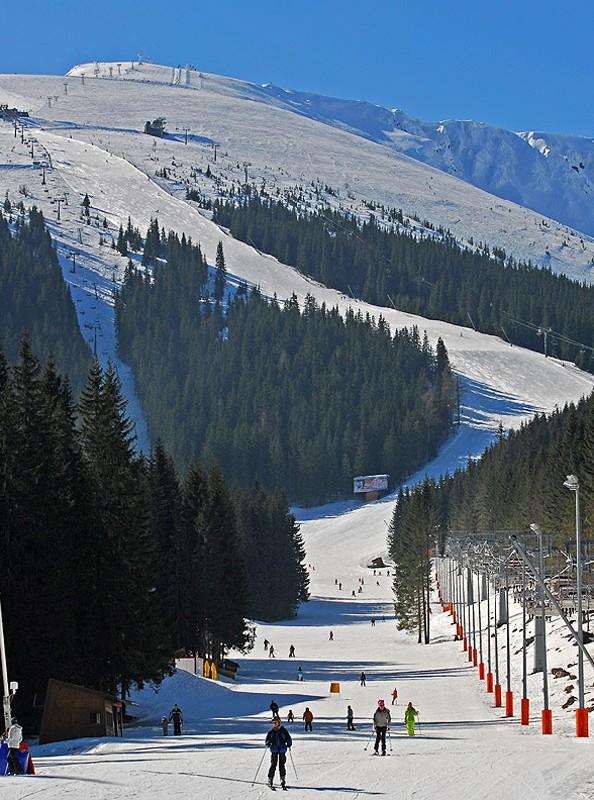 Jasná-Chopok. Stok nr 1 na Słowacji