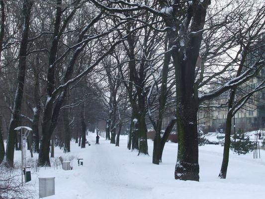 Warszawa. Krzyż w Alei Kasztanowej