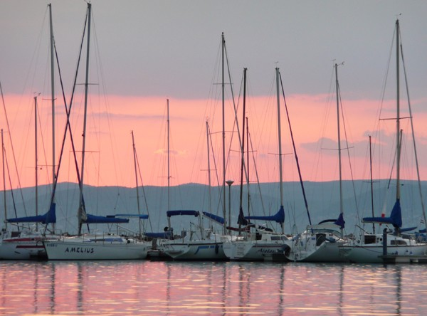 Balaton. Jakie ryby złowimy w jeziorze…