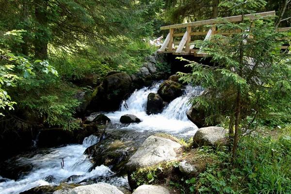 Dolina Olczyska. Zielonym szlakiem w stronę wywierzyska