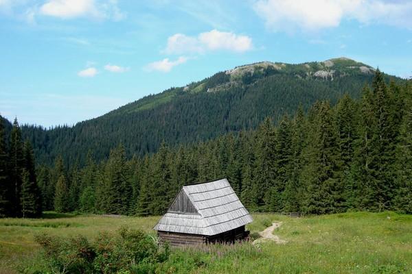 Dolina Olczyska Zielonym szlakiem w stronę wywierzyska