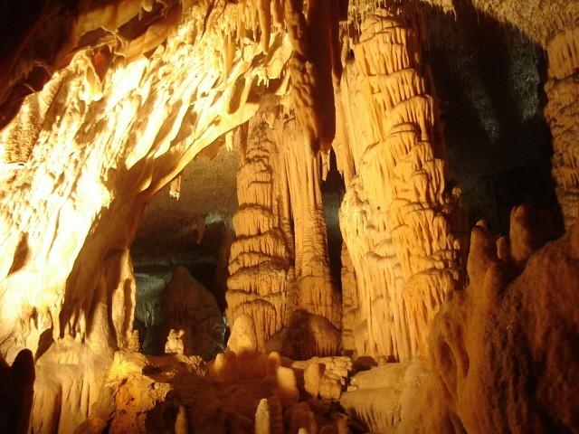 Jaskinia Postojna. Z wizytą u jaskiniowego odmieńca