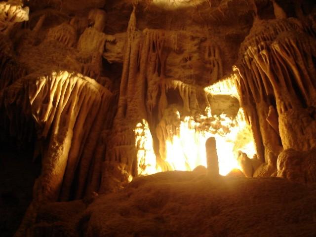 Jaskinia Postojna Z wizytą u jaskiniowego odmieńca
