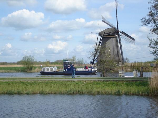 Kinderdijk. Rząd wiatraków na polderze