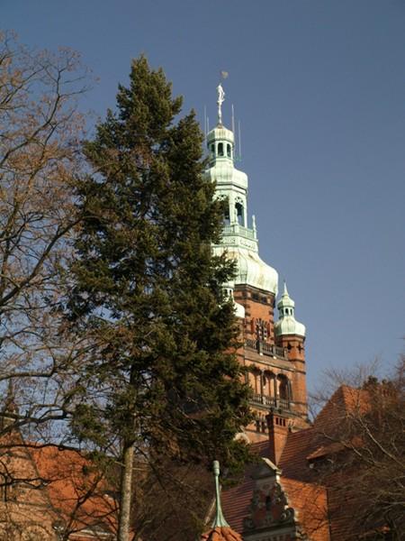 Szczecin. Marynarz na wieży urzędu