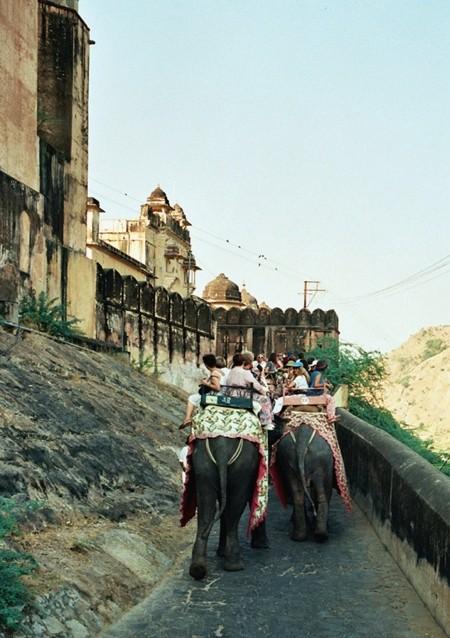Fort Amber. Do pałacu na grzbiecie słonia