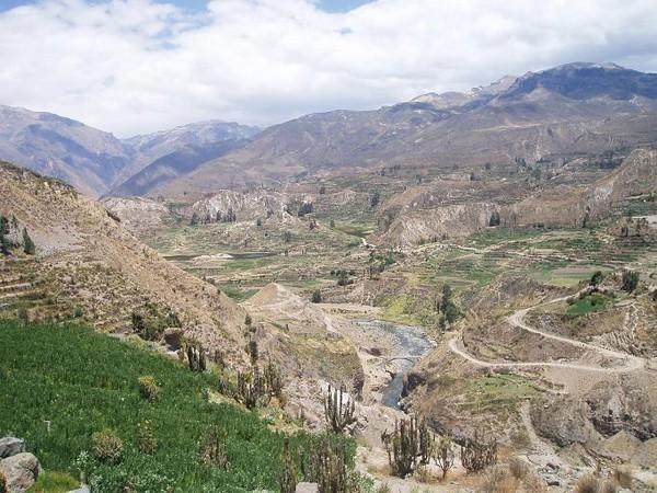 Kanion Colca. Kondory szybują nad głowami