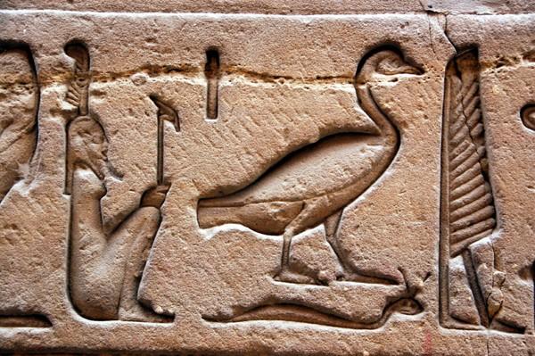 Nil Między Luksorem a Asuanem