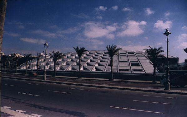 Aleksandria Biblioteka jak Feniks z popiołów