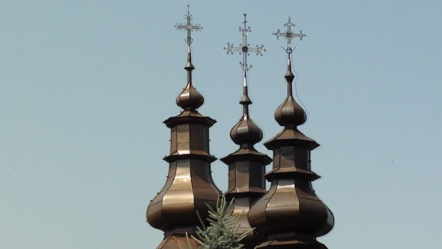 Łosie W dzwonnicy cerkwi żyją nietoperze