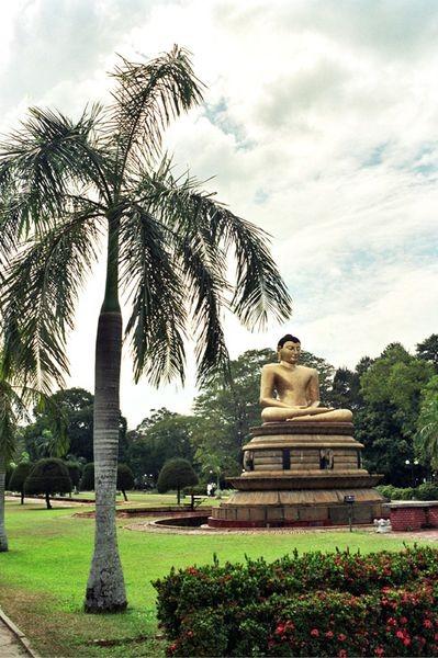 Kolombo. Stąd inspiracje czerpał Walt Disney