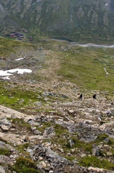 Galdhøpiggen. Najwyższy szczyt Norwegii i Skandynawii