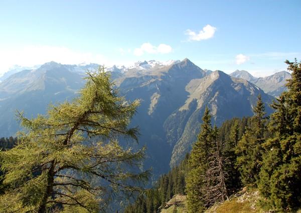 Schynige Platte. Kolejką zębatą do alpejskiego ogrodu