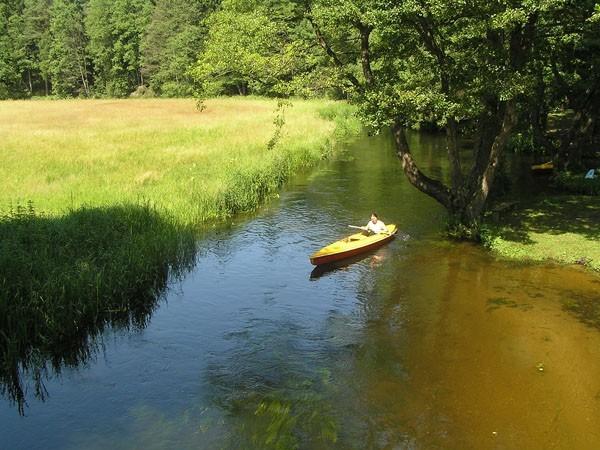 Rospuda. W dół rzeki: kajakiem i na rowerze