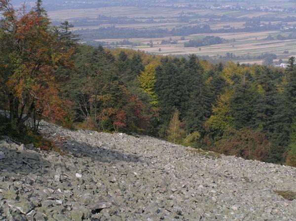 Łysogóry Góry łyse, czyli gołe od boru