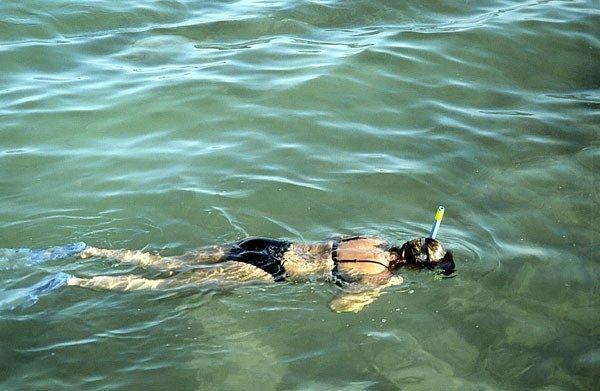 Sharm el-Sheikh. Z maską i rurką na koralowych rafach