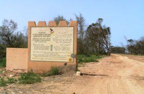Souss-Massa W rezerwacie, pod dyskretną opieką