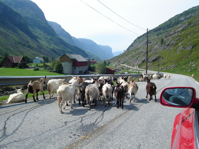 Jørpeland Stąd wiedzie droga na Ambonę