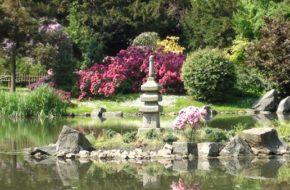 Wrocław Japoński ogród w Parku Szczytnickim