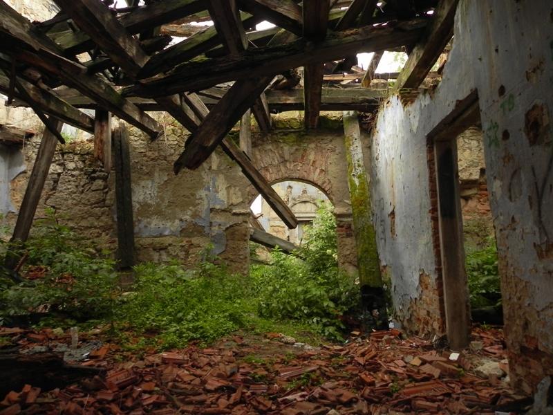 Nowy Korczyn. Nad Nidą straszą ruiny synagogi