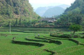Lào Cai Wietnamczycy są pracowici…